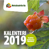 Kalenteri 2019